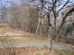 From a distance the fence disappears; we're hoping it will be a deterrent to theft.