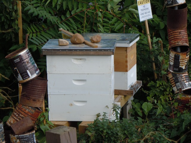 All in all, it's a very happy place for the bees.