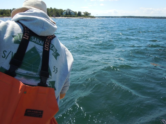 Nate in his orange lobstering waterproofs. Lobstermen hook the buoys, then haul up as many as five traps per line.