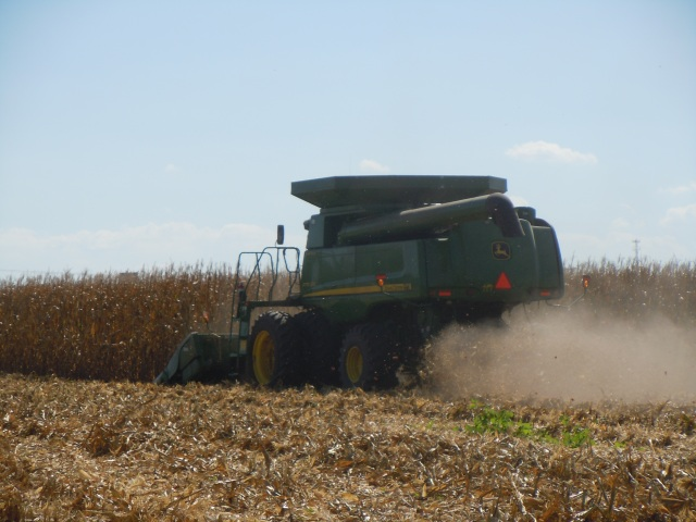 I couldn't get a picture from the front--it moved surprisingly fast, but here's the corn harvester moving through the field