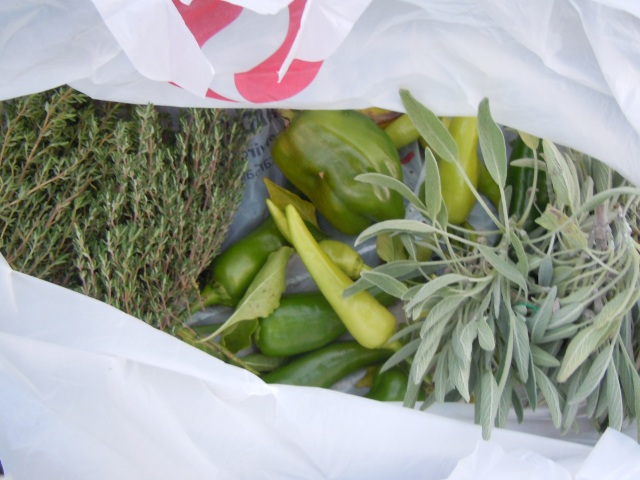 Thyme, peppers, sage.  Yum.  This is the unsightly bag in the picture of the whole garden...