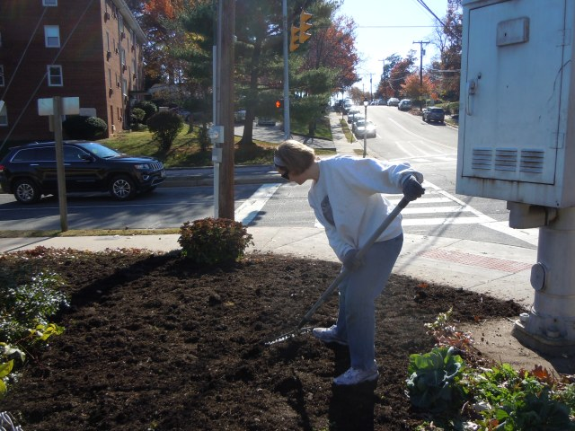 Jane rakes the mulch into place.  Now all we need is a little rain.