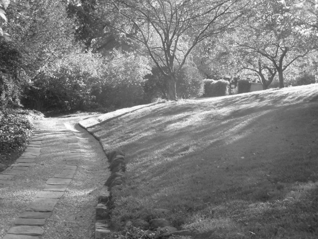Here we have a textured path, soft grass, misty light.