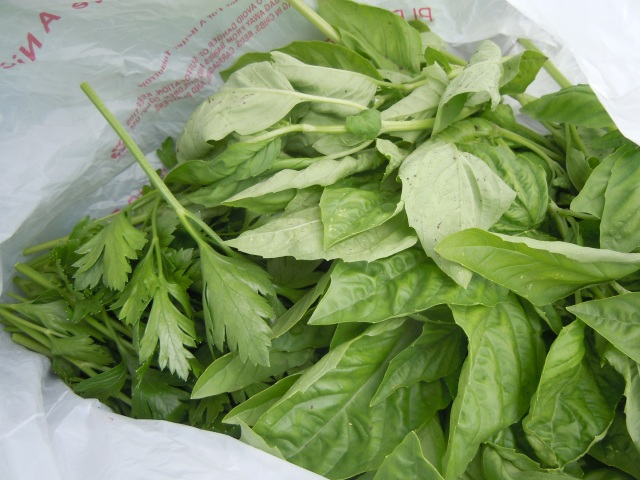 Some of that basil got used tonight at dinner.