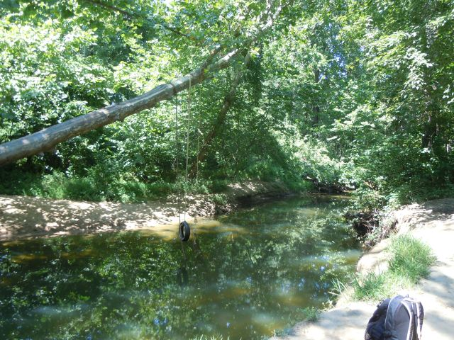 Walking in, we noted that Aquia Creek appears to be a local swimming hole.