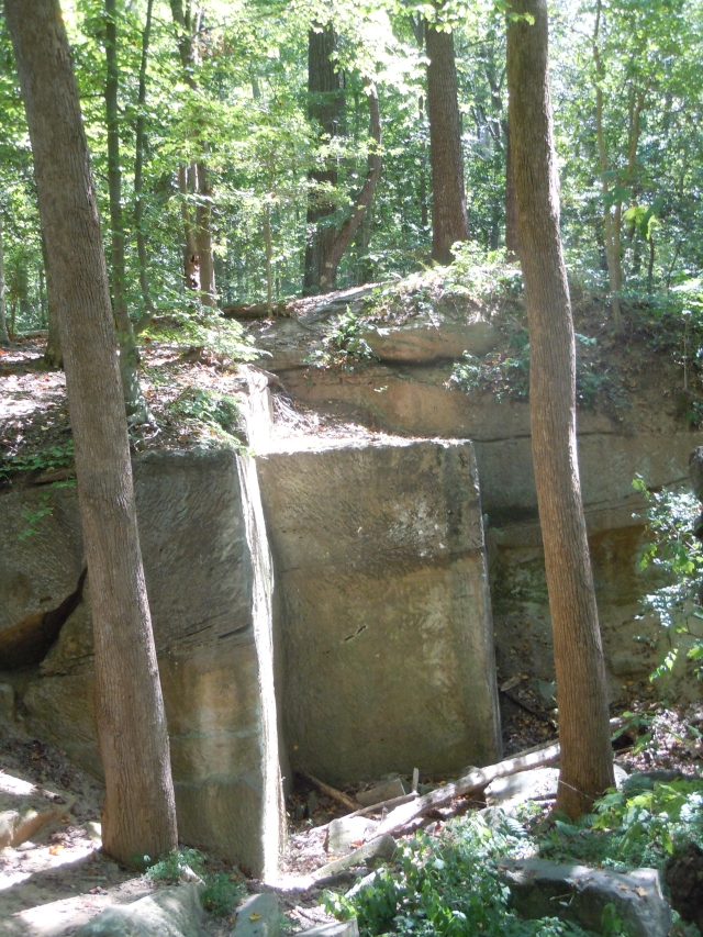 Deep in the woods, we found the sandstone outcrops.