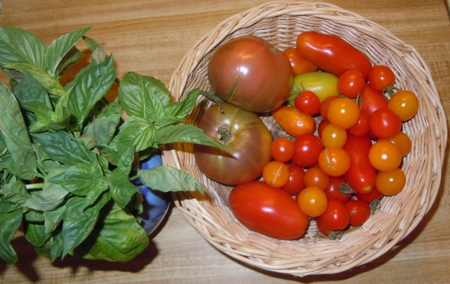 Finally, some tomatoes!