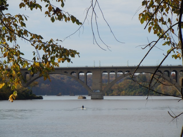 Rower moving south from Key Bridge.